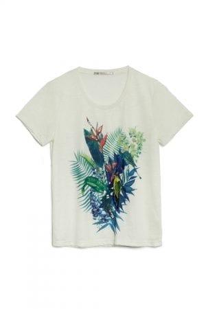 חולצת טי  Tropical Dreams