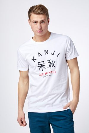 חולצת טי הדפס יפני